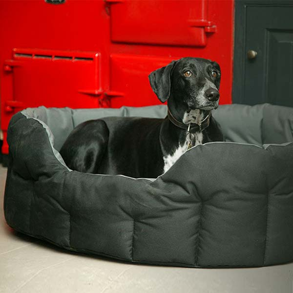 P&L Country Dog Waterproof Dog Bed - Oval | UK Made | D