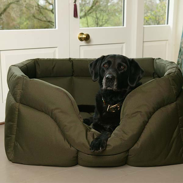 Country Dog Bed Reviews