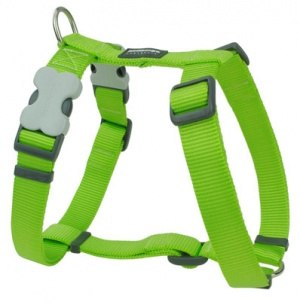 Red Dingo Lime Green Dog Harness