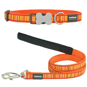 Orange Lotzadotz Collar & Lead Set