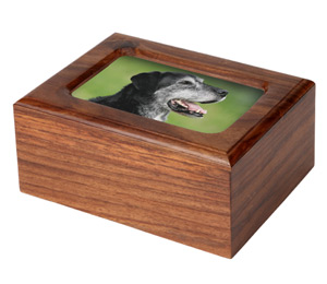 Wooden Pet Memory Box Howden