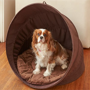 Pop Up Pet Shelter Deluxe