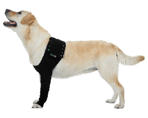 front leg dog protective covers