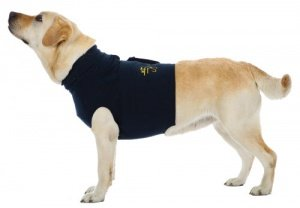 dog topshirt recovery vest