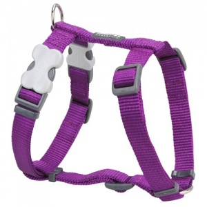 Red Dingo Purple Dog Harness