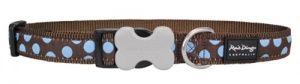 Red Dingo Dog Collar Blue Spots on Brown