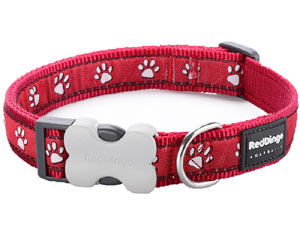 Red Dingo Dog Collar Desert Paws Red