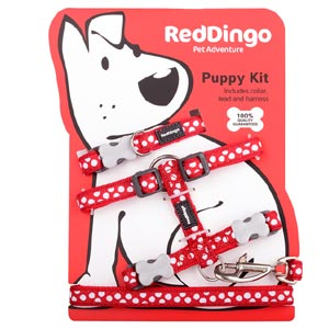 Puppy Harness, Collar & Lead Set - White Spots on Red