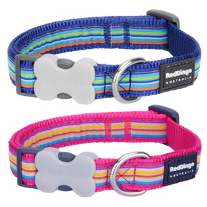 Red Dingo Dog Collar Horizontal Stripe