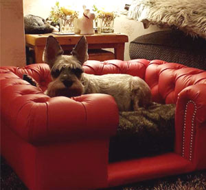 Balmoral Red Real Leather Dog Sofa