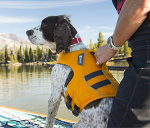 K-9 Float Coat Dog Life Jacket