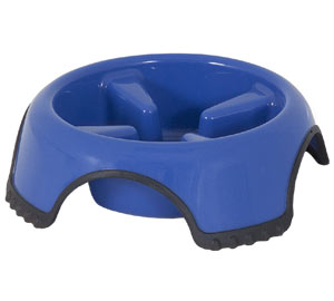Skid Stop Slow Feed Dog Bowl