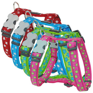 Red Dingo Dog Harness Stars