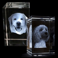 3D Photo Engraved Crystal Block