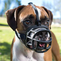 Baskerville Dog Muzzle - Ultra