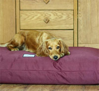 Waterproof Orthopaedic Dog Mattress