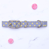 Seeing Spots Dog Collar