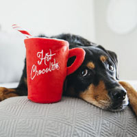 Christmas Dog Toy - Hot Chocolate