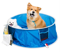 Pop Up Dog Bath Splash Pool