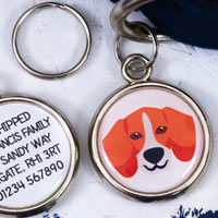 Dog Breed Pet Tag - Beagle