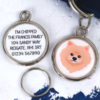 Dog Breed Pet Tag - Pomeranian