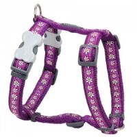 Red Dingo Dog Harness Daisy Chain Purple