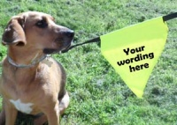 Dog Lead Message Bunting