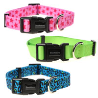 Doodlebone Bold Dog Collars