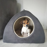 Dreamy Igloo Dog Beds