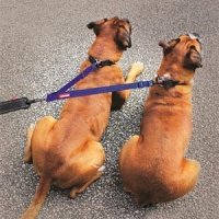 Soft Webbing Coupler - Dual Dog Walking