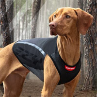 Thermax Winter Dog Vest