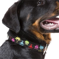 FuzzYard Dog Collar - Space Raiders