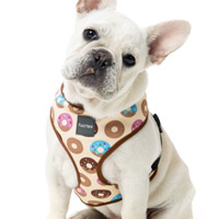 FuzzYard Dog Harness - Go Nuts for Donuts