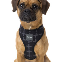 FuzzYard Dog Harness - Yeezy