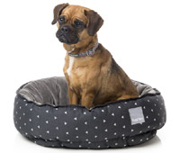 FuzzYard Reversible Dog Bed - Night Sky