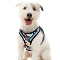 FuzzYard Step-in Dog Harness - Sonic