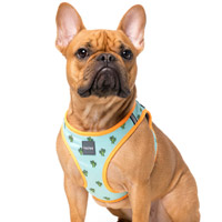 FuzzYard Step-in Dog Harness - Tucson