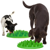 Green Slow Dog Feeder