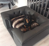 Sandringham Grey Real Leather Dog Bed