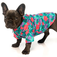 Hawaiian Dog Shirt - Lahaina