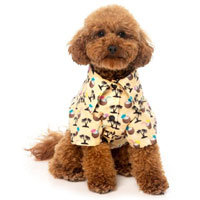 Hawaiian Dog Shirt - Sandy Coconut
