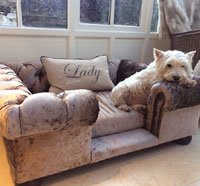 Balmoral Truffle Velvet Luxury Dog Sofa