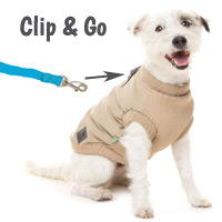 MacGyver Dog Jacket & Harness Combo
