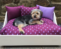 Miaboo Luxury Wooden Dog Bed - Lavender Love