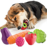 Orbee-Tuff Fruit & Veg dog chew toys