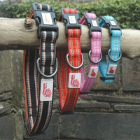 Padded Comfort Dog Collar