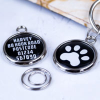 Pawesome Pet Tag - Paw
