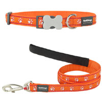 Orange Desert Paws Collar & Lead Set