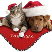 Personalised Christmas Pet Blanket