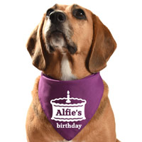 Personalised Dog Bandana Birthday Cake